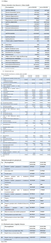 Wybrane jednostkowe dane finansowe z bilansu Spółki
